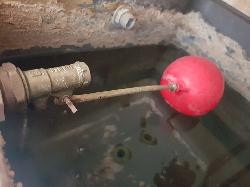 water tank and new ballcock